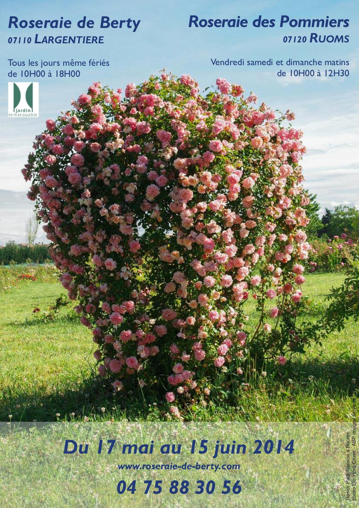 Au Nom De La Rose De La Poésie Des Parfums Des Couleurs
